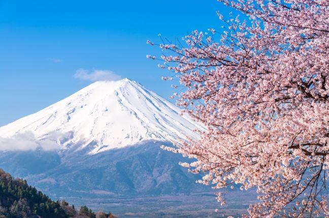 日本海运空运专线